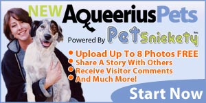 Aqueerius Pets & Petsnickety - Upload 8 Photos FREE